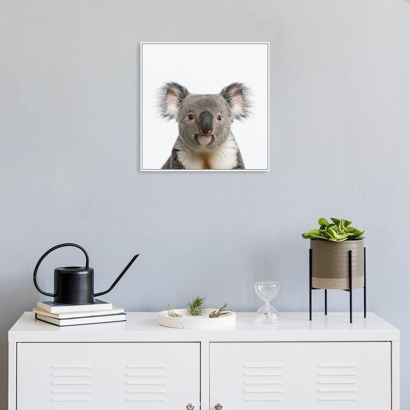 Wall-Art-Poster-Canvas-Framed-Cute Koala-Gioia Wall Art