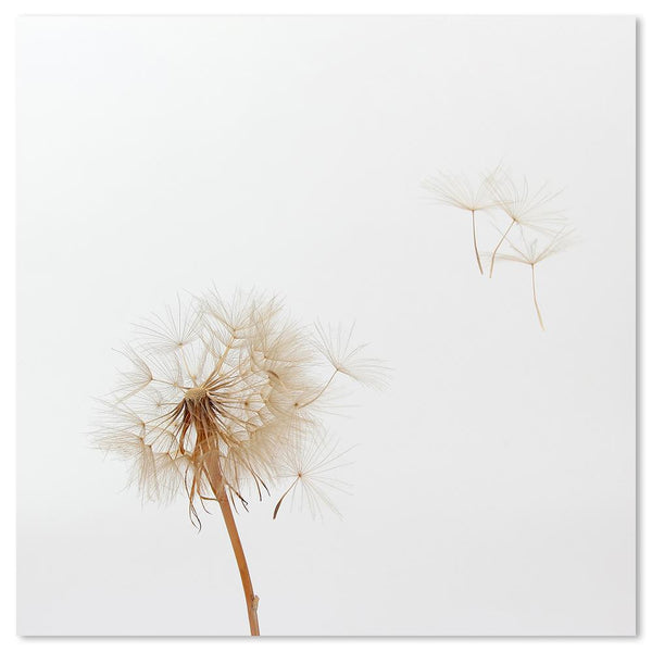 Wall-Art-Poster-Canvas-Framed-Dandelions, Style C-Gioia Wall Art