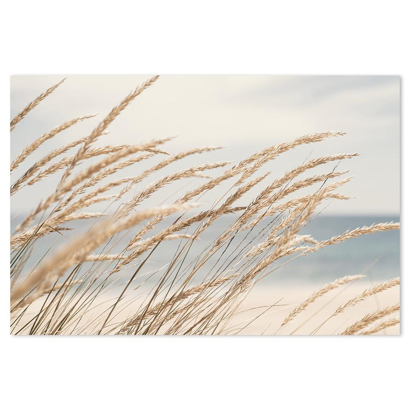 Wall-Art-Poster-Canvas-Framed-Dune grass by the beach-Gioia Wall Art