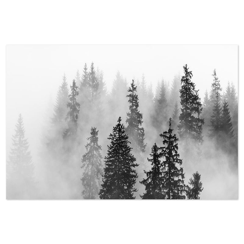 Wall-Art-Poster-Canvas-Framed-Foggy Forest, Monochrome Landscape-Gioia Wall Art