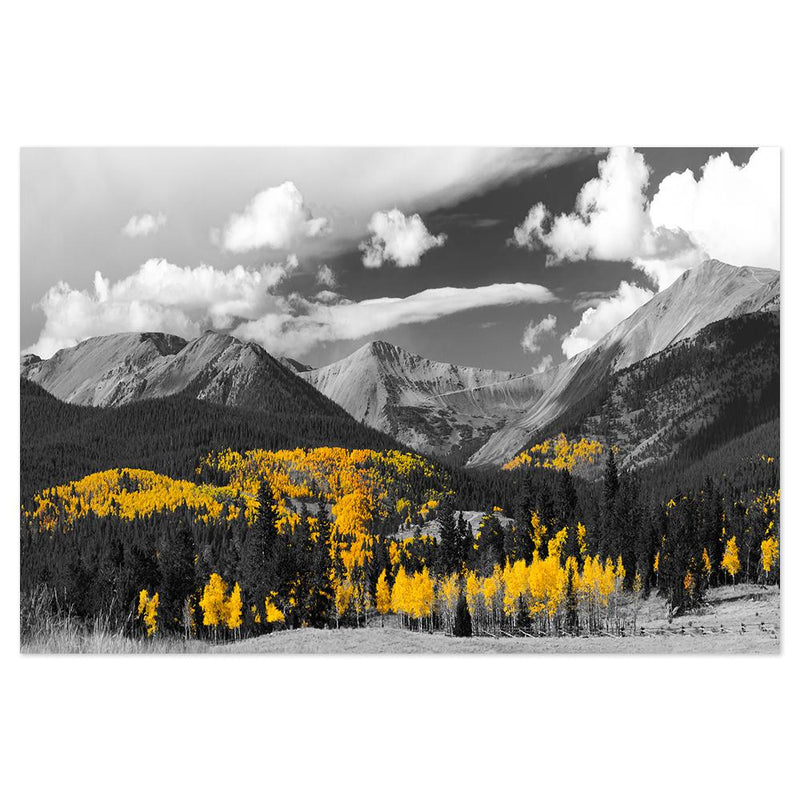 Wall-Art-Poster-Canvas-Framed-Golden Bless, Monochrome Mountain Landscape with Bright Yellow Trees-Gioia Wall Art