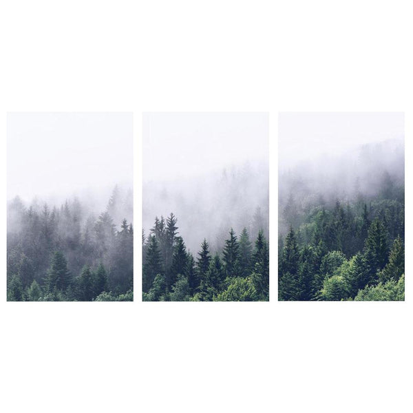 Wall-Art-Poster-Canvas-Framed-Green Foggy Forest, Nordic Landscape, Set Of 3-Gioia Wall Art