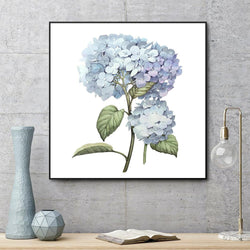 Wall-Art-Poster-Canvas-Framed-Hydrangea-Gioia Wall Art