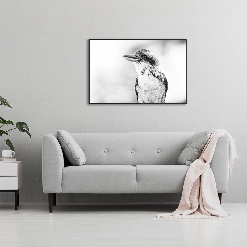 Wall-Art-Poster-Canvas-Framed-Kookaburra-Gioia Wall Art