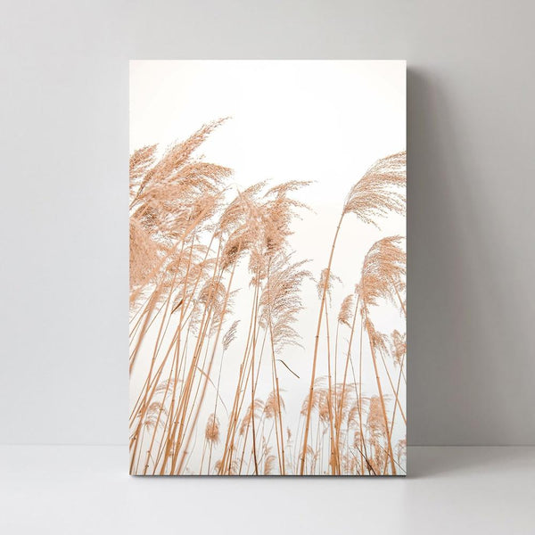 Wall-Art-Poster-Canvas-Framed-Pampass Grass Field-Gioia Wall Art