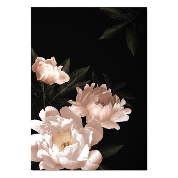 Wall-Art-Poster-Canvas-Framed-Pink Peony In Black Background-Gioia Wall Art