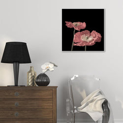 Wall-Art-Poster-Canvas-Framed-Pink Poppy-Gioia Wall Art