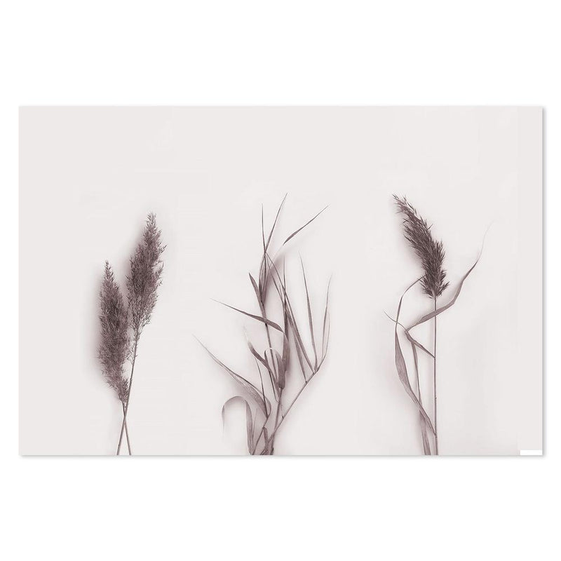 Wall-Art-Poster-Canvas-Framed-Plum Coloured Dried Stems-Gioia Wall Art