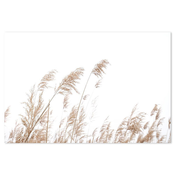 Wall-Art-Poster-Canvas-Framed-Reed by the beach-Gioia Wall Art