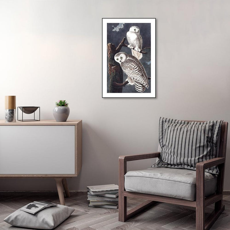 Wall-Art-Poster-Canvas-Framed-Snowy Owl By John James Audubon-Gioia Wall Art