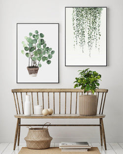 Wall-Art-Poster-Canvas-Framed-String Of Pearls And Pilea Peperomioides, Set Of 2-Gioia Wall Art