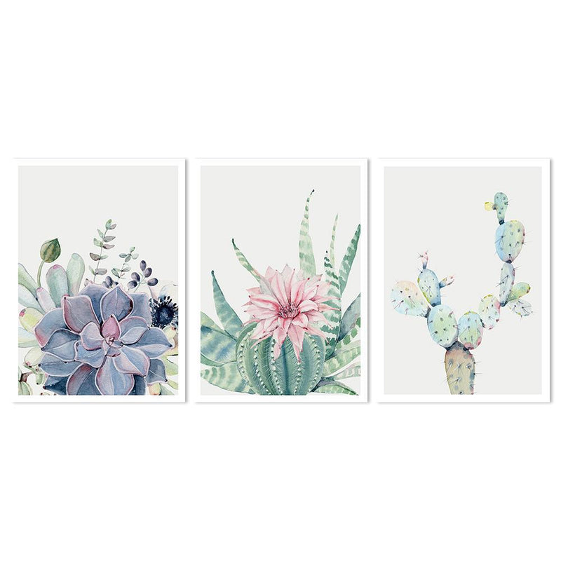 Wall-Art-Poster-Canvas-Framed-Succulents, Set Of 3-Gioia Wall Art