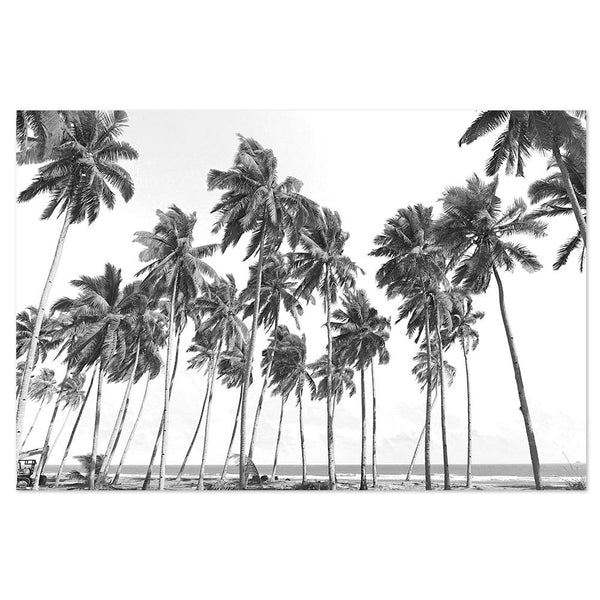 Wall-Art-Poster-Canvas-Framed-Swaying Palm Trees-Gioia Wall Art