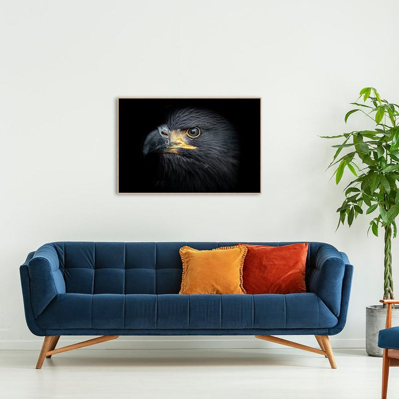 Wall-Art-Poster-Canvas-Framed-The Eagle Eye-Gioia Wall Art