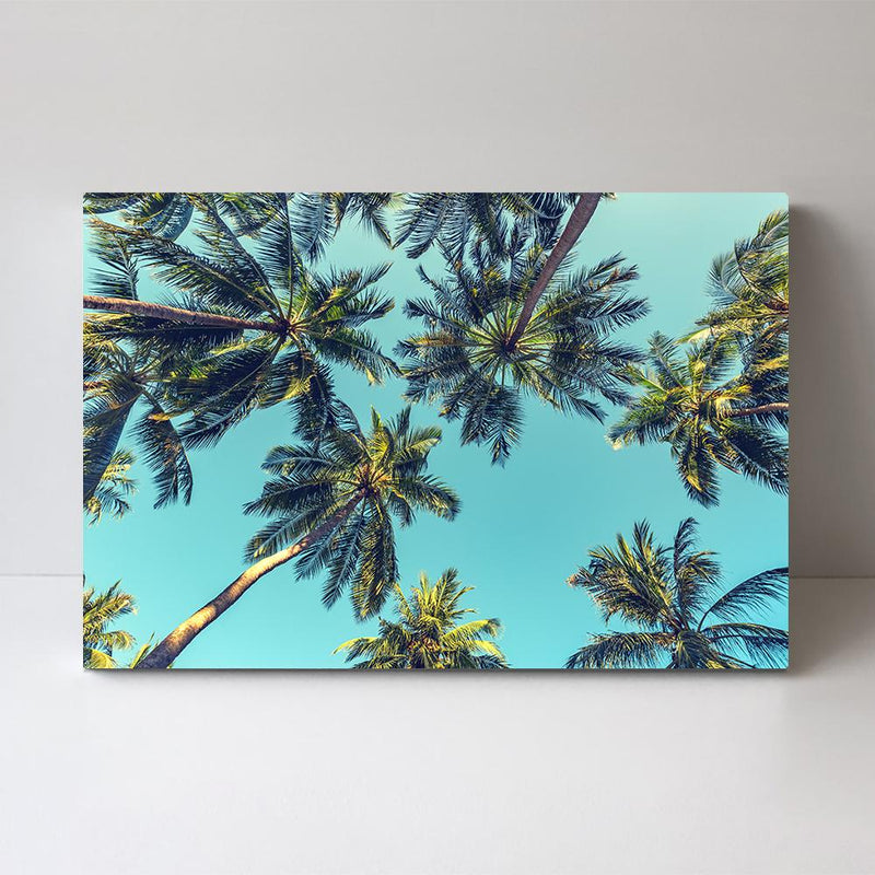 Wall-Art-Poster-Canvas-Framed-Turquoise sky and palm trees-Gioia Wall Art