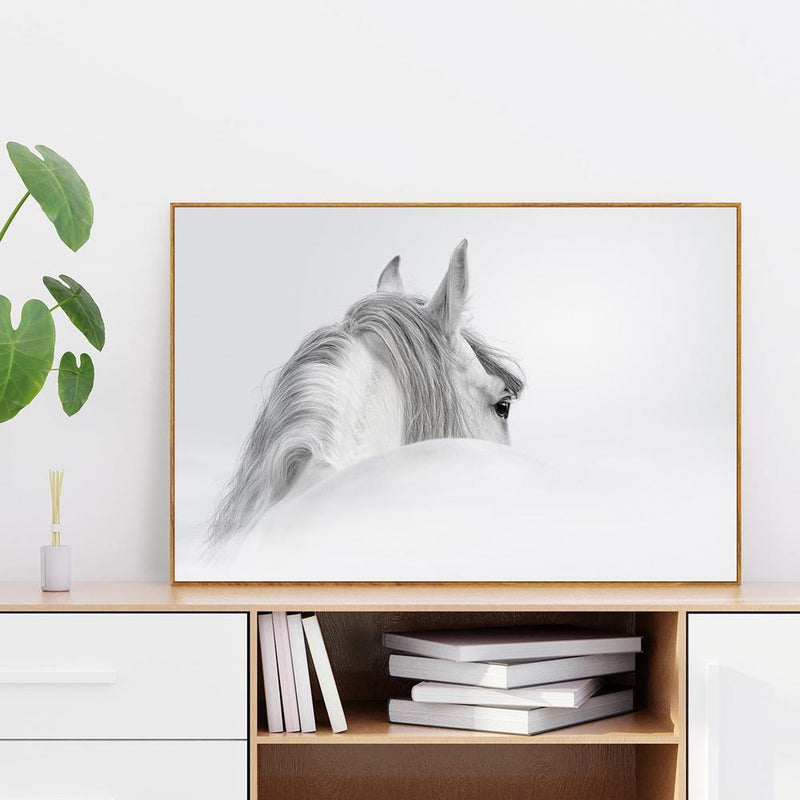 Wall-Art-Poster-Canvas-Framed-White Horse-Gioia Wall Art