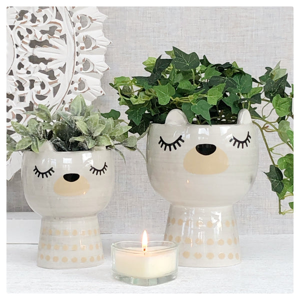 Bear Face Planters