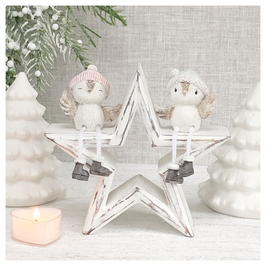 Set of 2 sitting boy & girl birds