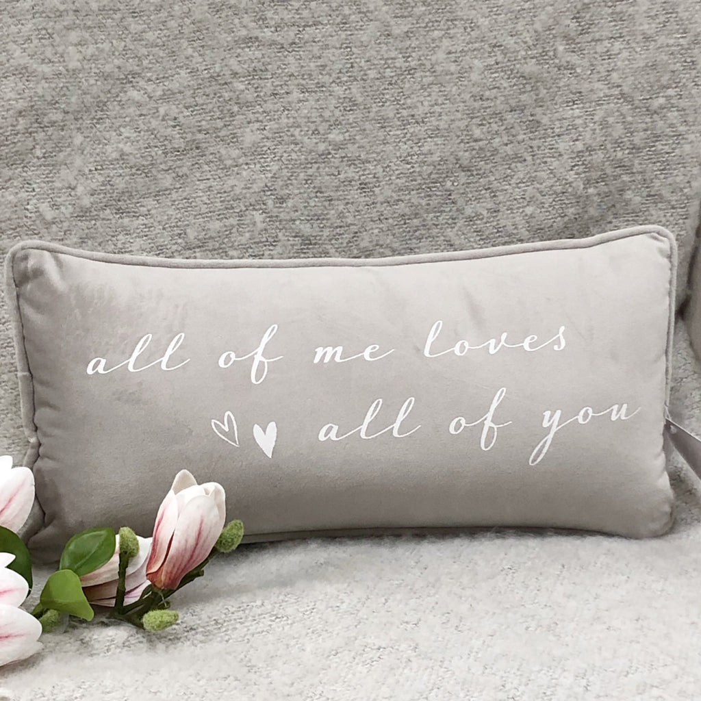 all of me loves all of you cushion