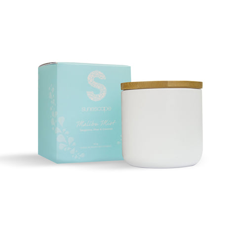 Triple Scented Soy Candle - Malibu Mist
