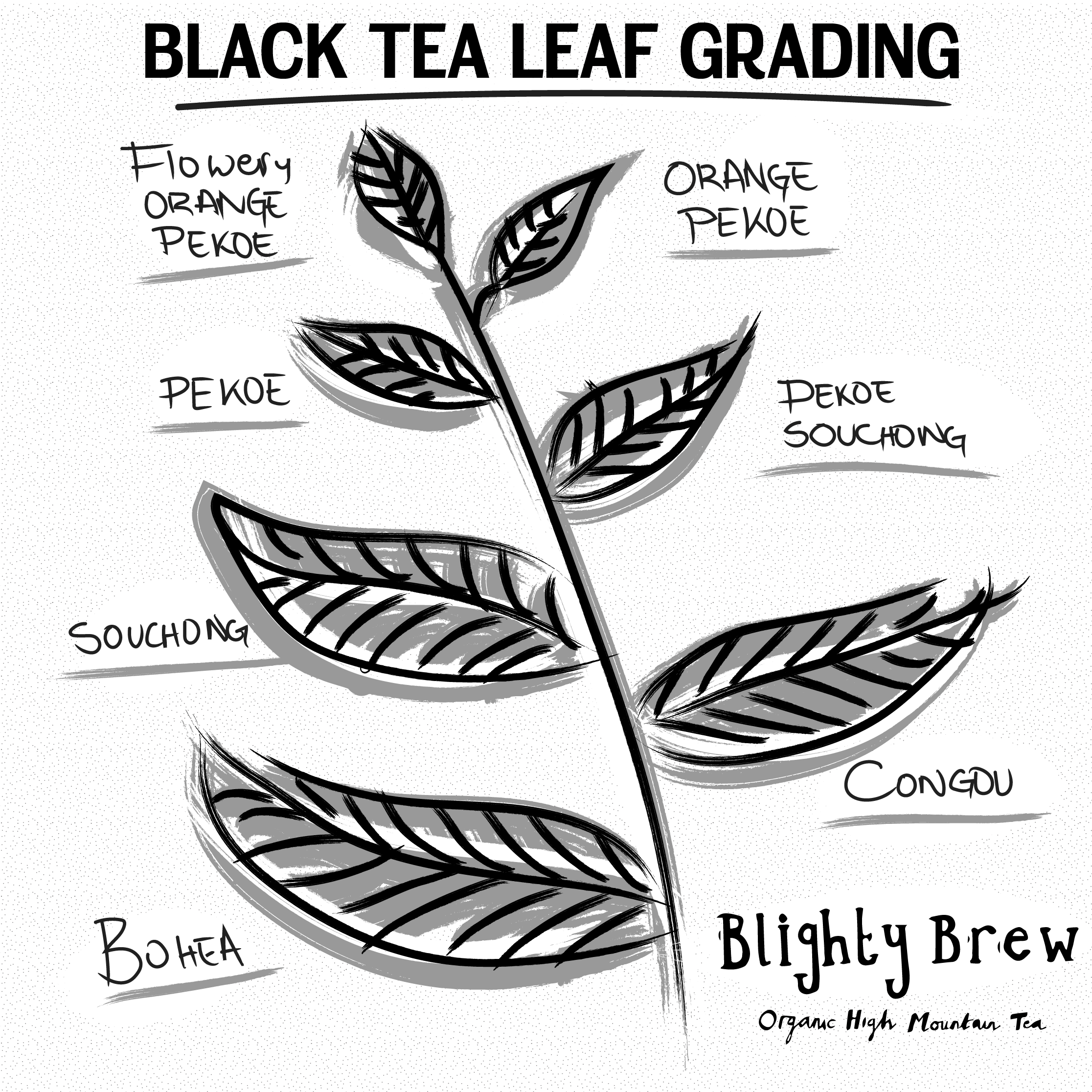 Black Leaf Tea