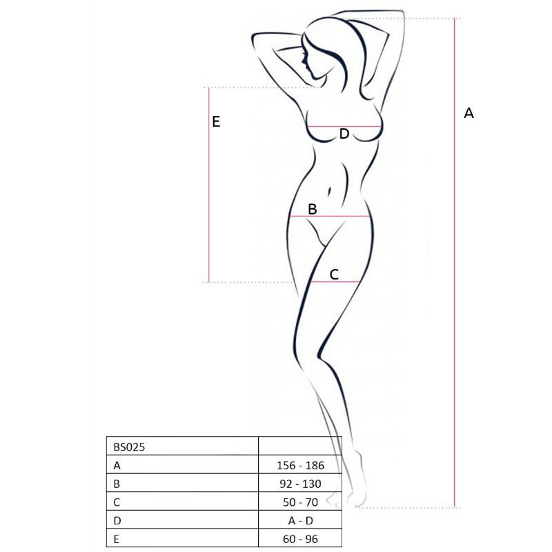 PASSION WOMAN BS025 BODYSTOCKING DRESS STYLE ONE SIZE
