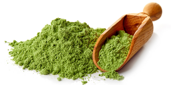 The Everyday Benefits of Incorporating a Greens Powder in Your Diet