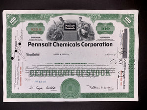 Aandeel Pennsalt Chemicals Corporation - 1959 - World of Maps & Travel