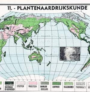 Wereldkaart - Plantenaardrijkskunde - 1939 - World of Maps & Travel