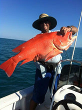 Load image into Gallery viewer, Shared Charter Reef Fishing - Reefinity Adventures