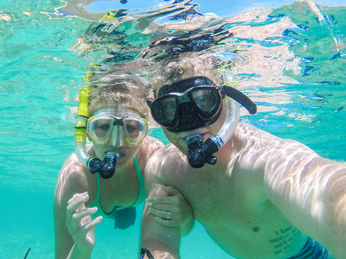 Half Day Shared Charter  Snorkeling / Diving - Reefinity Adventures