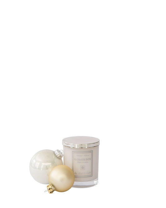 Fig Leaf & Cedar -Luminous White Candle - Special Edition