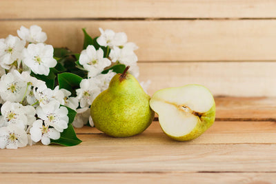 Flower Box Home Fragrances | Flowers and Pear