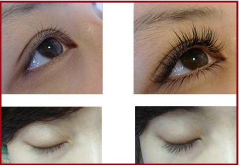 Image of feg eyelash serum results