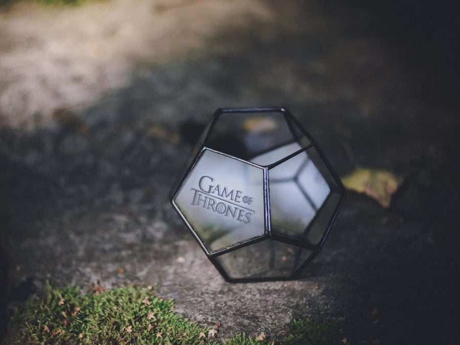image of glass and metal mini dodecahedron terrarium
