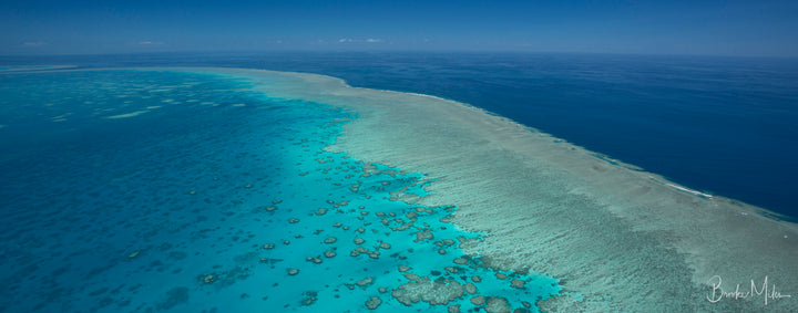 5 Reasons Why The Great Barrier Should Be On Your Bucket List!
