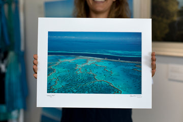 Art Mount - Hardy's Reef