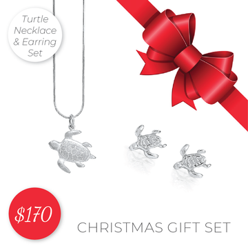 Jewellery Bundle - Turtle