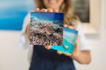 Acrylic Tile Turtle Print Crush