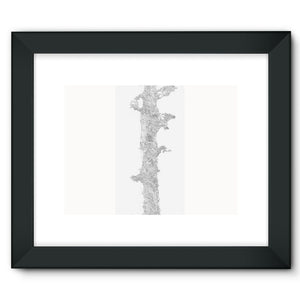 Sky Tree Framed Fine Art Print