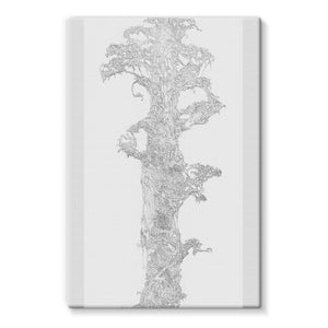 Sky Tree Stretched Eco-Canvas