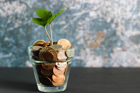 Monetary Incentives for going green