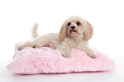 Shaggy Baby Pink Pooch Dog Pad - In Vogue Pets - My Pet Gift Box