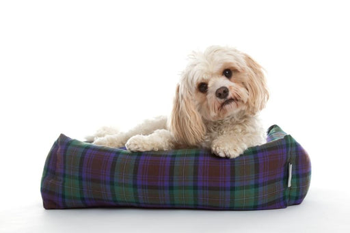 Isle of Sky Bolster Dog Bed - In Vogue Pets - My Pet Gift Box