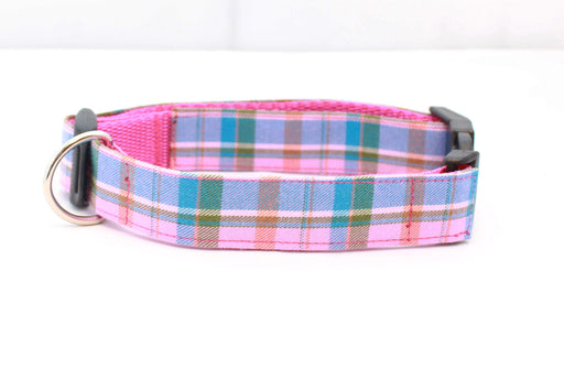 Raspberry Barkberry Plaid Dog Collar