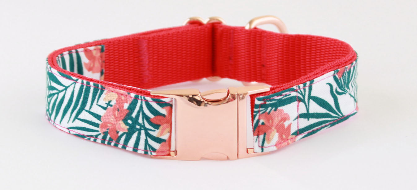 Peppercorn Orchard Rose Gold Dog Collar - Pet Pooch Boutique - My Pet Gift Box