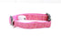 Pink Diamond Blaze Dog Collar - Pet Pooch Boutique - My Pet Gift Box