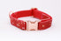 Fireball Red Blaze Slim Fit 15mm Dog Collar - Pet Pooch Boutique - My Pet Gift Box