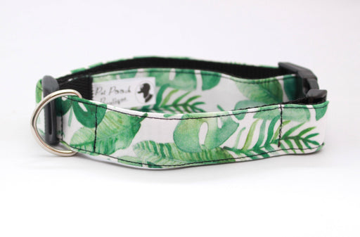 Tropical Palm Leaves Dog Collar - Pet Pooch Boutique - My Pet Gift Box