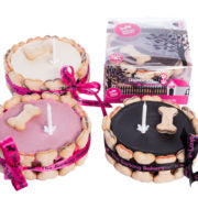 Pink Yoghurt Topped Pawty Birthday Cake For Dogs - Vital Pet Products - My Pet Gift Box